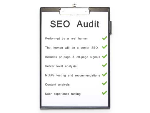 Advanced SEO Audit